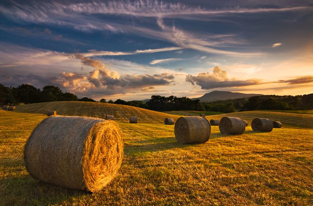 hay-bales-farm-sunset