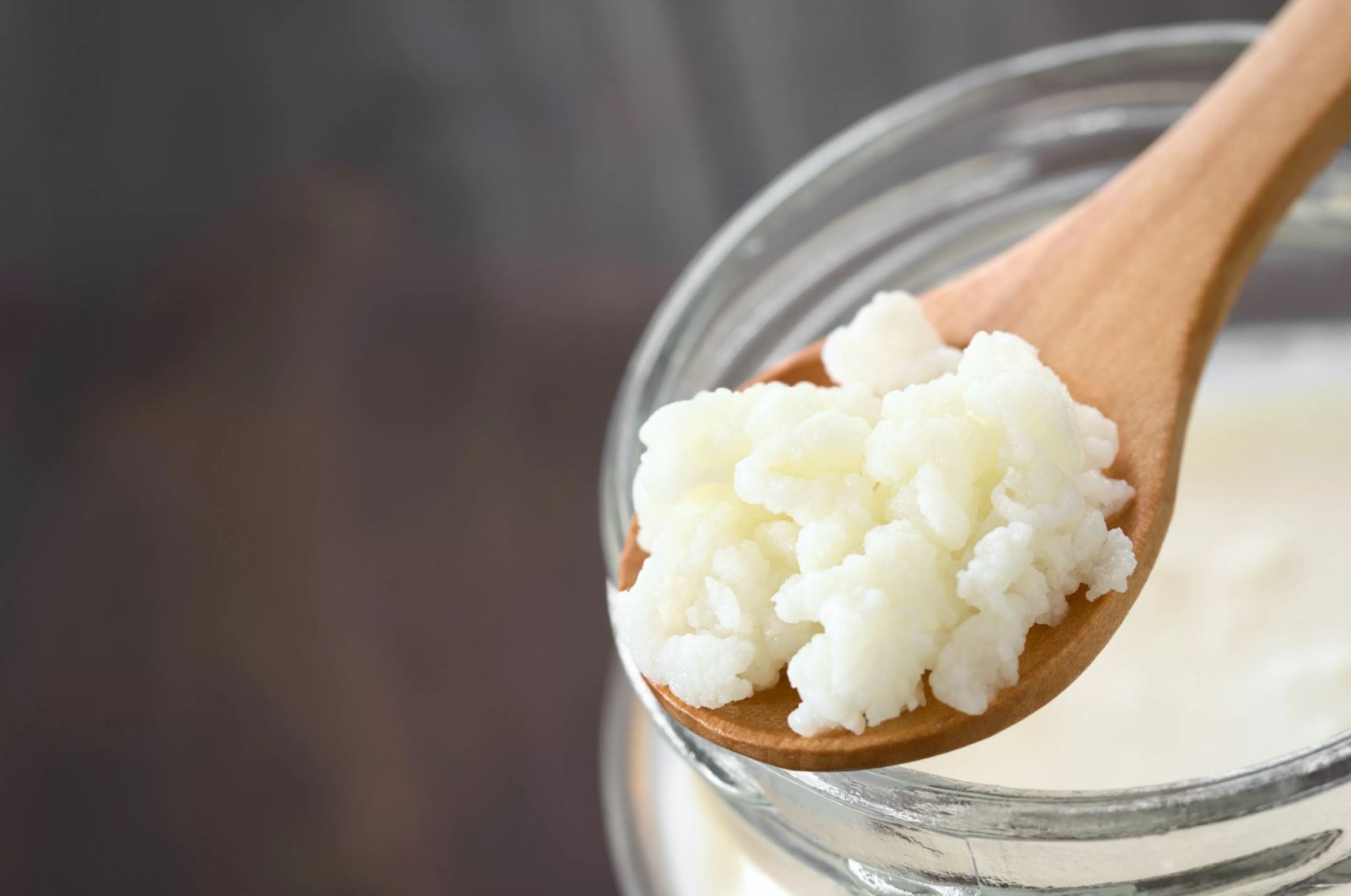 Kefir Grains Picture