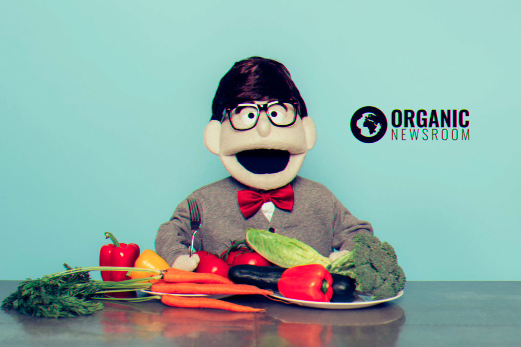 0003-VEGAN-CLOTHING-PUPPET-ORGANIC-NEWSROOM