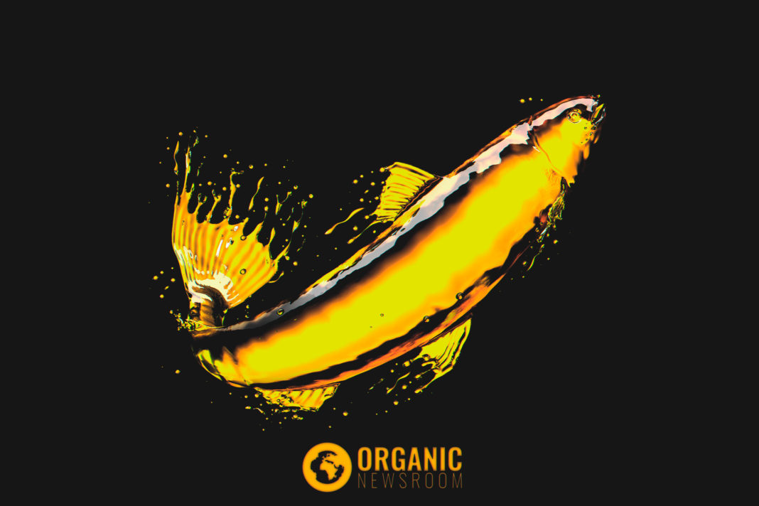 Fish oil vs krill oil OrganicNewsroom