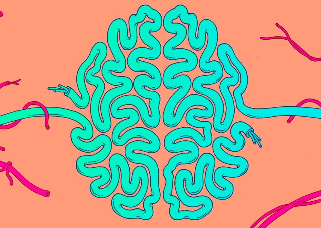 Brain training illustration organicnnewsroom