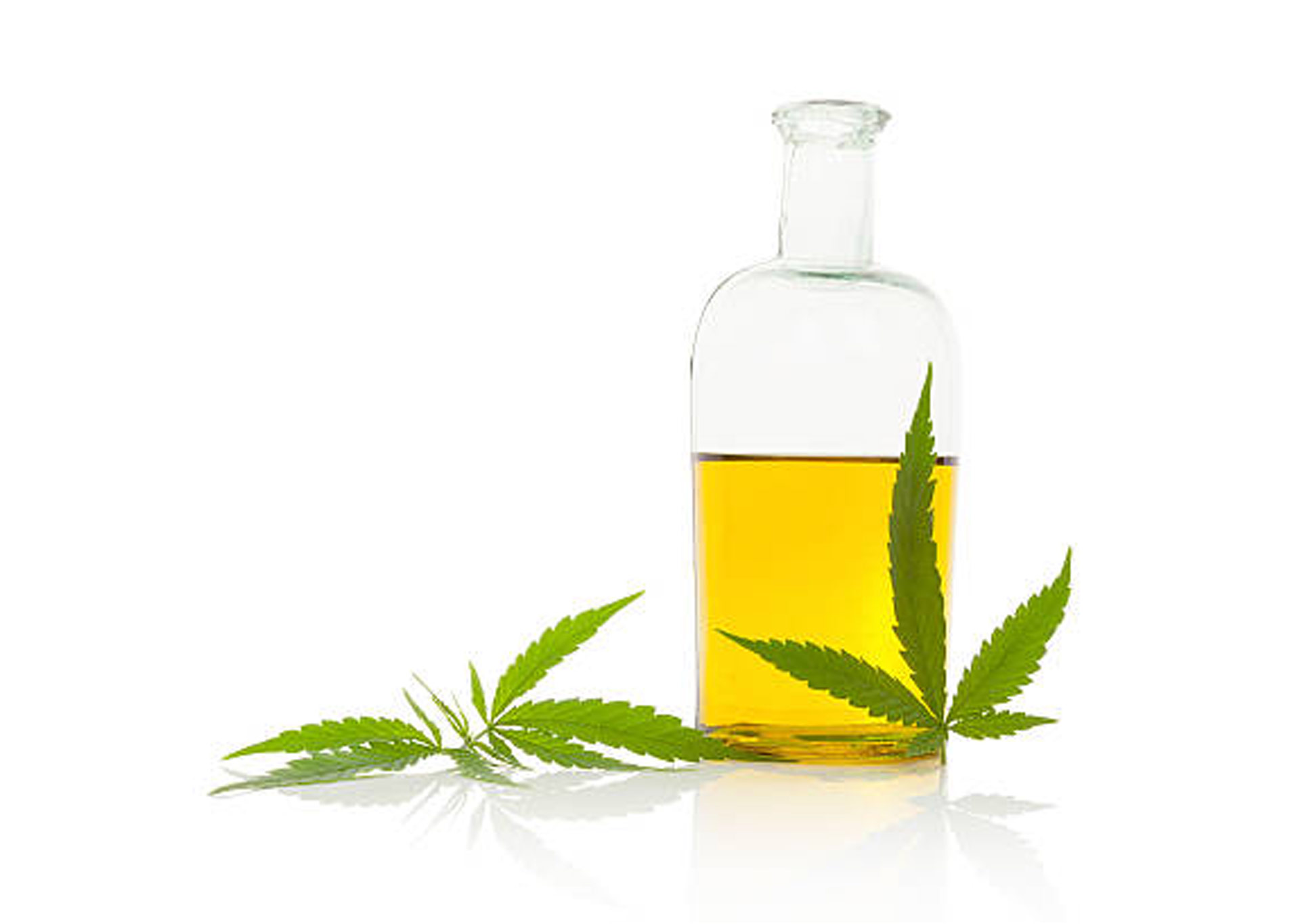 CBD Oil & Weight Loss: Separating Science from Nonsense Orga