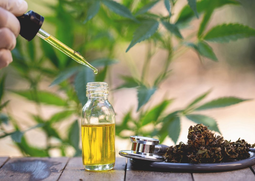 cbd-vs-thc-oil-organicnewsroom